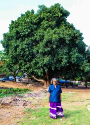 Sooriya planted this Bodhi Tree over 30 years ago
