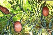 Breadfruit Garden panels (detail)