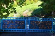 Main Driveway Entrance Gate