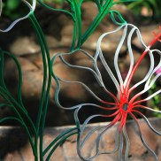 Bent steel Hibiscus Art detail by Sooriya Kumar
